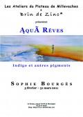 Sophie Bourges 2011 déf copie